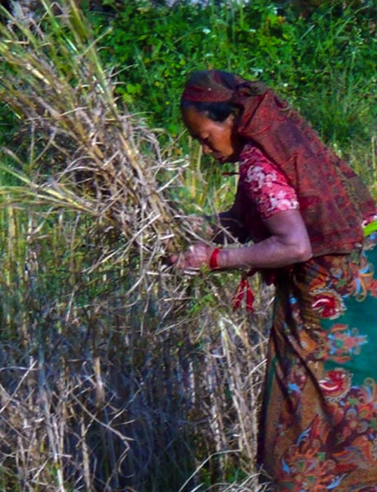 afrika rad u selu